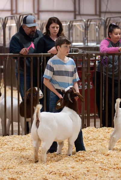 kay_county_showdown_goats_20191207-83.jpg