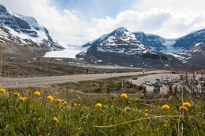 Athabasca Glacier - Jasper Nat'l Park
