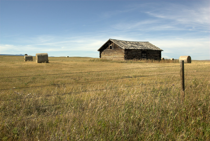 Solitary shed in the grassy landscape of Glacier National Park, Montana
