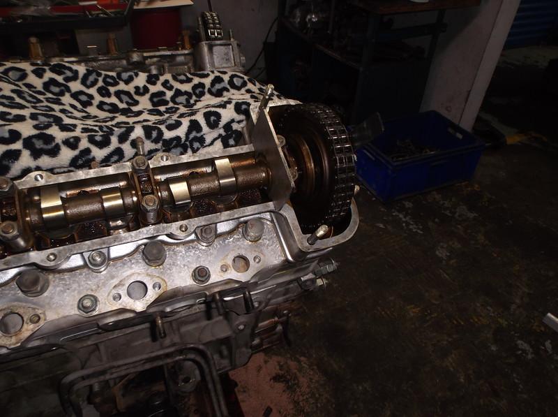 DSCF8698.JPG