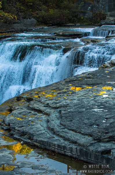 Gold in the Water    Photography by Wayne Heim