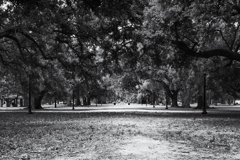 Audobon Park, New Orleans.