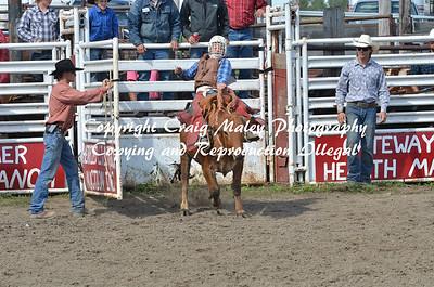 09-01-14 Build A Cowboy Saddle Bronc