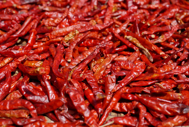 red chili peppers drying (1).jpg