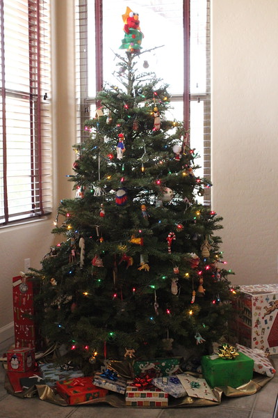 Christmas in Arizona 2014