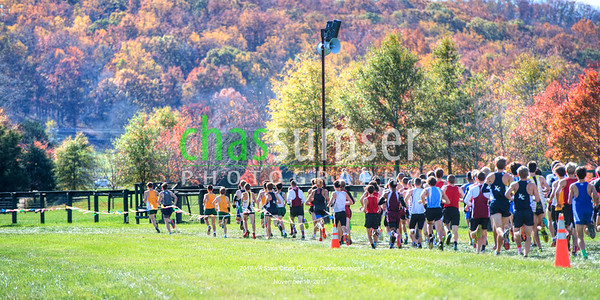 2017.11.10 Cross Country: 2017 VA 4A and 5A State Championships