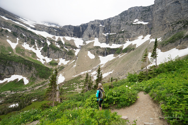 150615_Red_Rock_Falls_to_Swiftcurrent_Pass_9368.jpg
