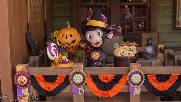 Disneyland Resort, Tokyo Disneyland, Westernland, Frontierland, Halloween