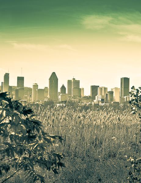 Montreal scenes
