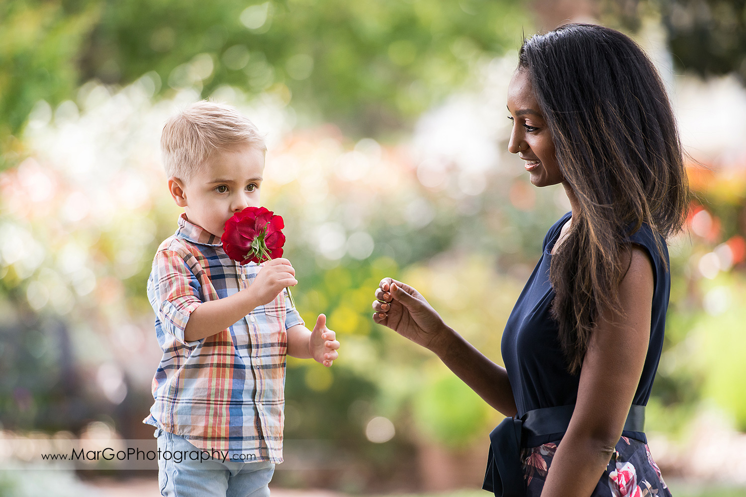 little boy handing out a rose to woman in navy blue dress in Shinn Historical Park and Arboretum in Fremont