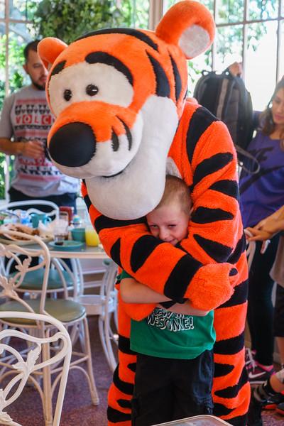 Disneyland-20150428-394.jpg