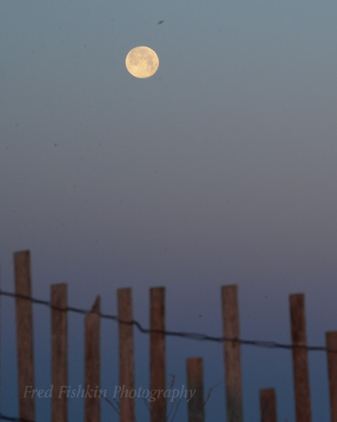 Moon over dune 04_30_18.JPG