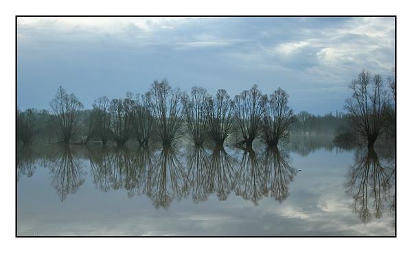 Paysages -Landscapes