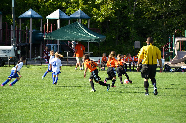 Vikings U8 Girls Fall 2016