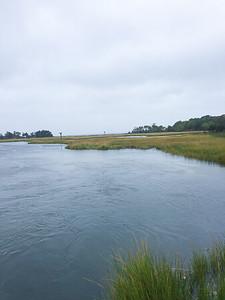 APES & Oceanography Sandy Hook Trip