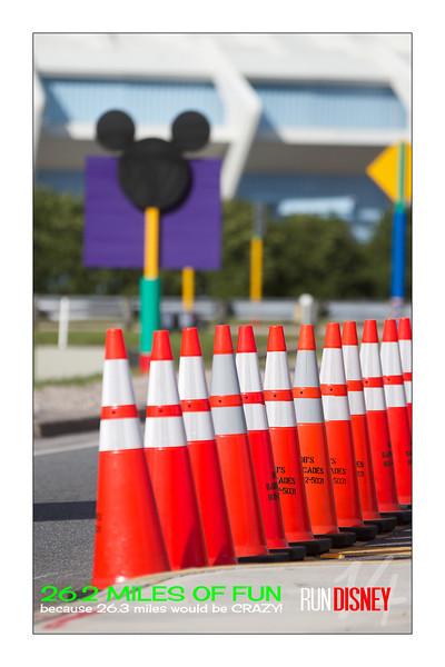 Walt Disney World Marathon Weekend 2014