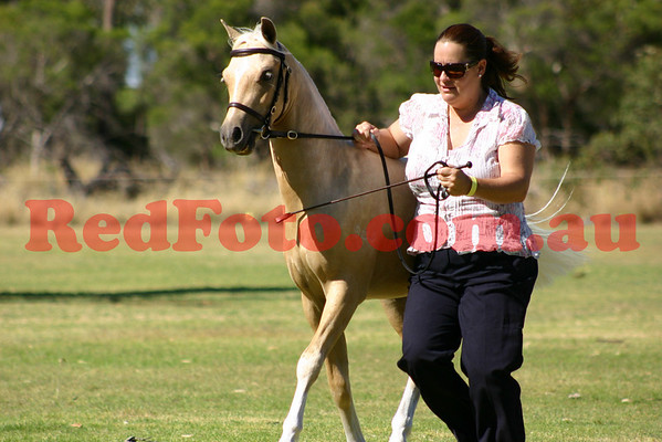 2011 01 16 Dilutes Under 12 hh