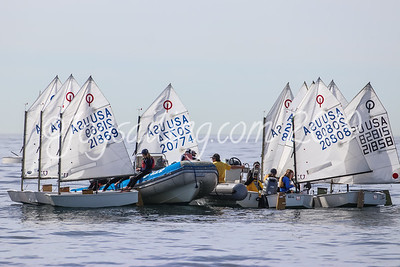 2019 Sailing Pictures