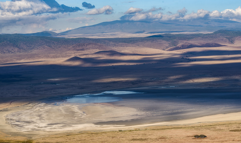 Play-of-ight-shadow-Ngorongoro-crater-tanzania.jpg