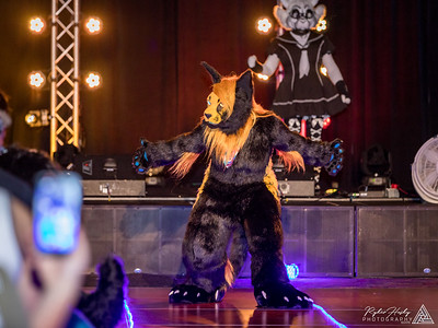 Charity Fursuit Auction