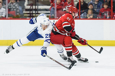 Canes vs Maple Leafs 11.21.18