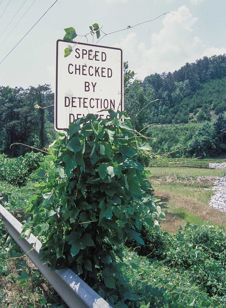 speed checked sign.jpg