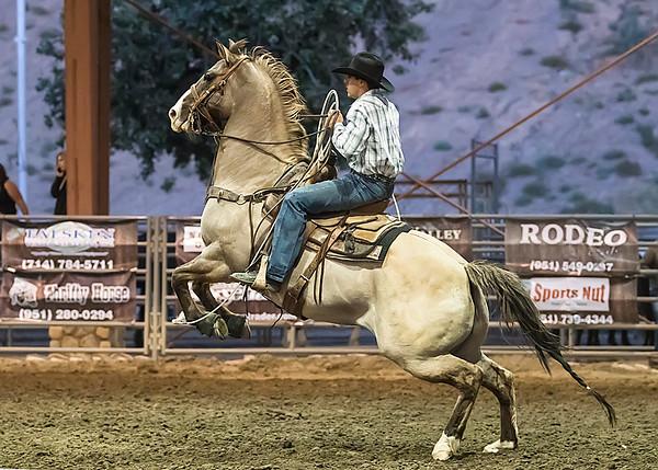 Ranch Rodeo - NHW Saturday