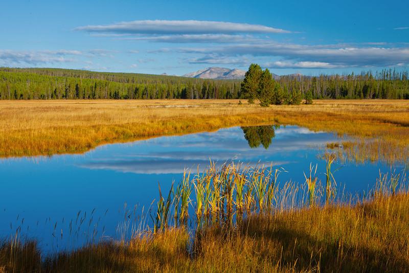 Yellowstone11 214-Edit.jpg