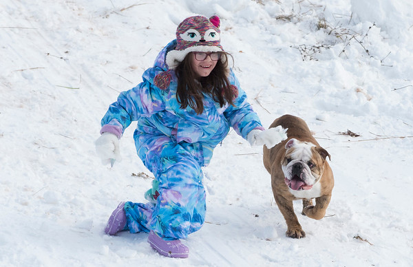 12/03/19 Wesley Bunnell | StaffrrLylah Saavedra, age 6, pets Roxy the bulldog while sledding at Smith Elementary School on Tuesday December 3, 2019.