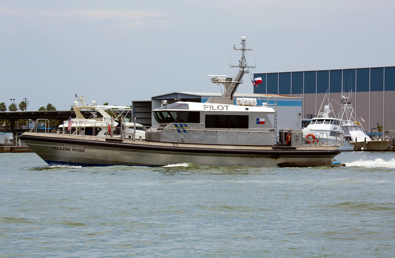 A ship's pilot's boat speeds by us.