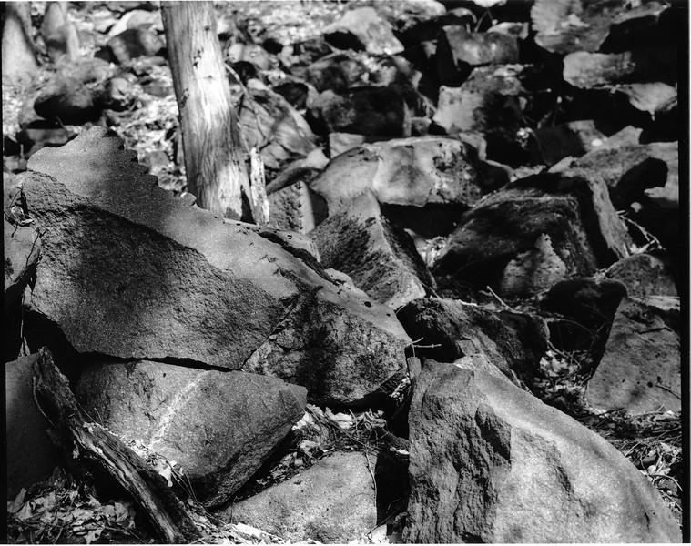 Odenwald011.jpg