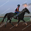 160919 Keeneland Sales and Training (13)