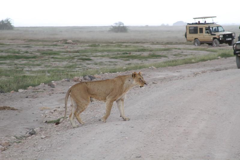 Kenya 2019 #2 1399.JPG