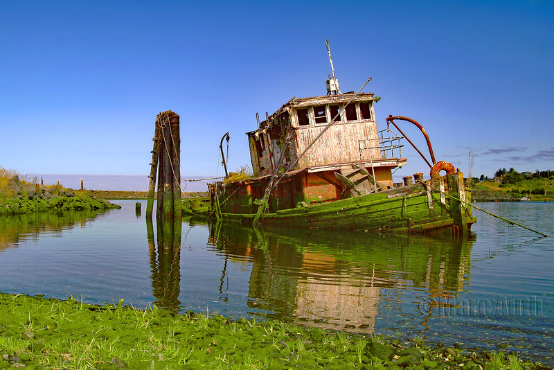 Marc Auth.1.Wreck of the Mary D HumeWM.jpg