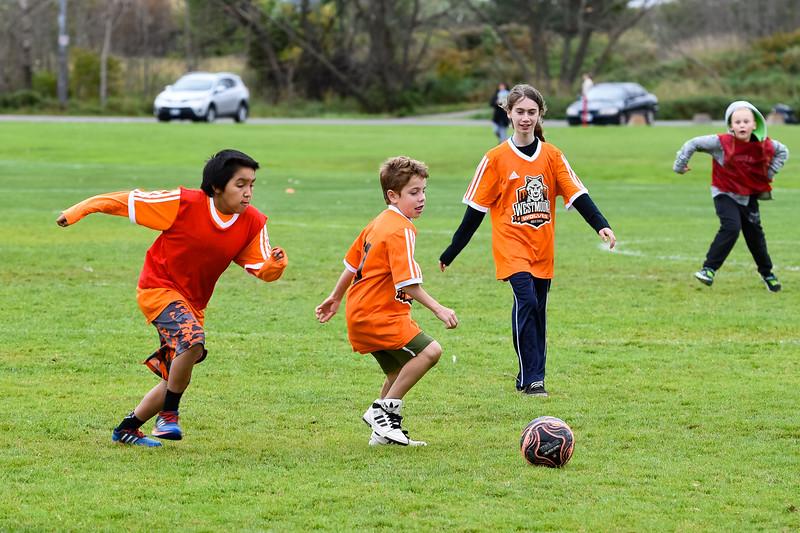 Westmount Soccer-31.jpg