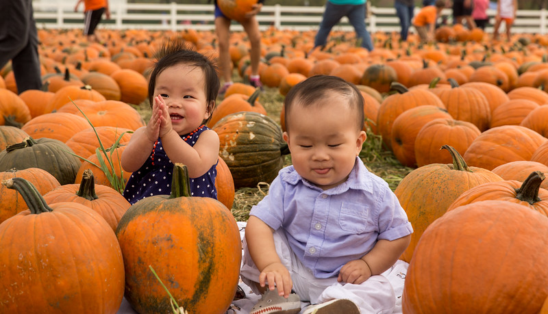 oliver_ella_pumpkin_patch-25.jpg