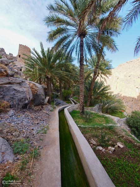 P1211236Al Hamra-Misfat Alabryeen.jpg