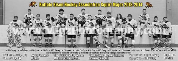 Buffalo Bisons Hockey