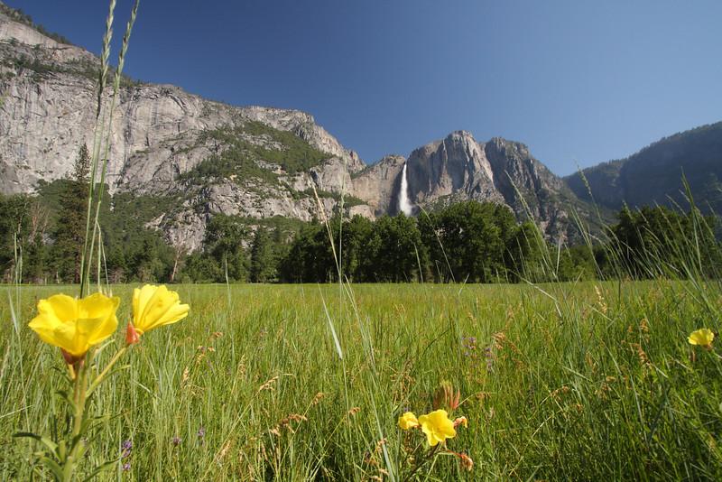 Yosemite 39.JPG