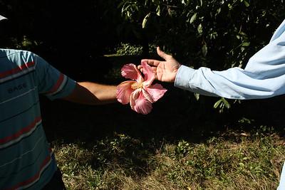 Cinefuegos Botanic Garden