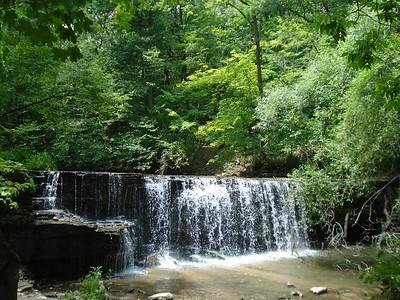 Destination-Nerstrand Big Woods State Park
