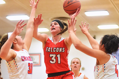Firelands can't hang on, falls to Edison