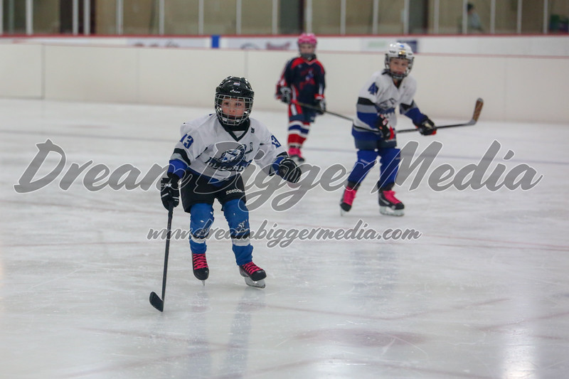 Blizzard Hockey 111719 7083.jpg