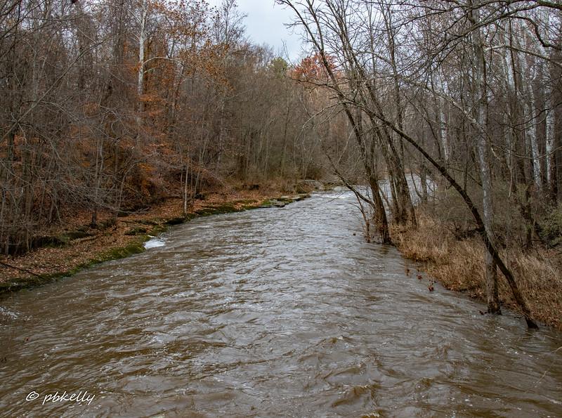 river 111718-3.jpg