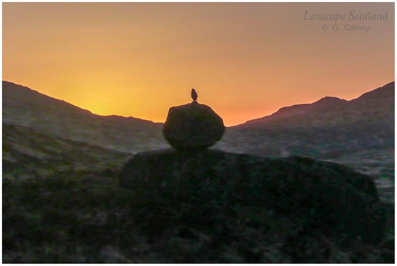 Erratic boulder silhouette, Kinloch Glen, sunset