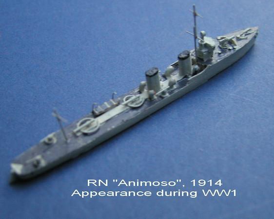 RN Animoso-02.jpg