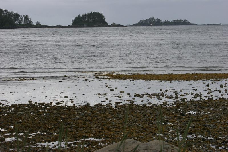Sitka shoreline