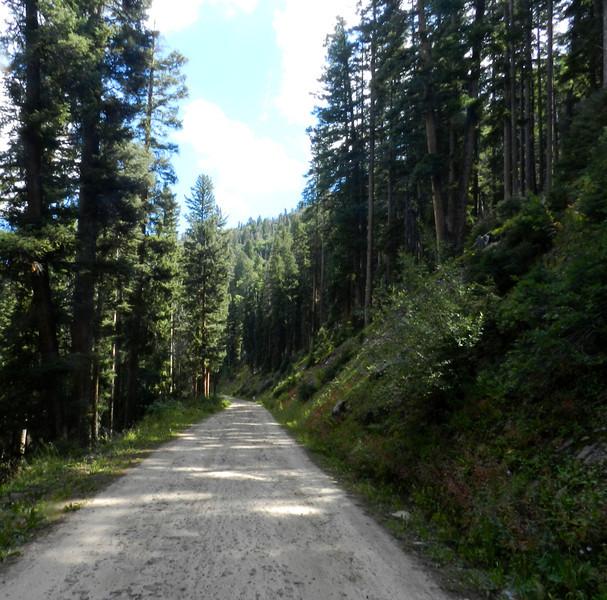 Walking road past Animas Overlook.jpg