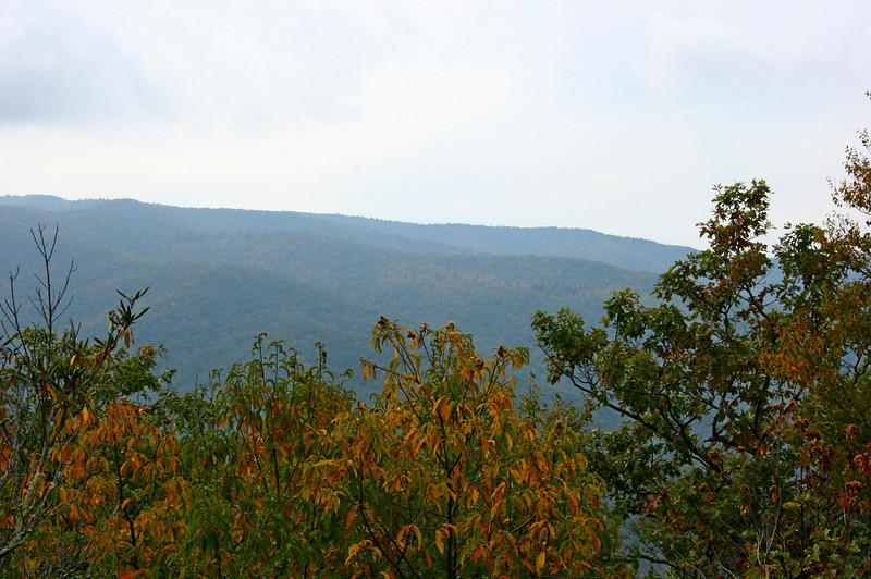 Pisgah Forest 9-30-12 102.jpg