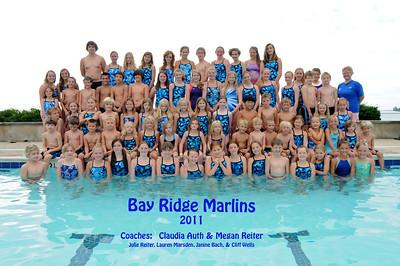 2011 Swim Team Photo
